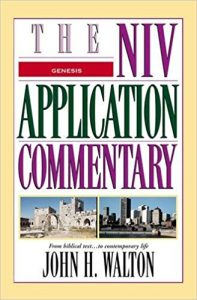 NIV application commentary