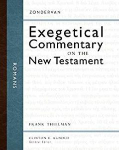 zondervan exegetical commentary on the new testament