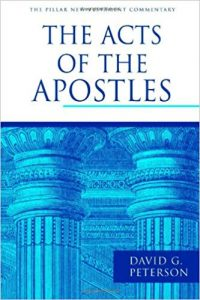 Acts commentary by David Peterson