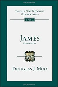 James commentary by Douglas Moo