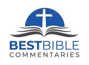 Best Bible Commentaries