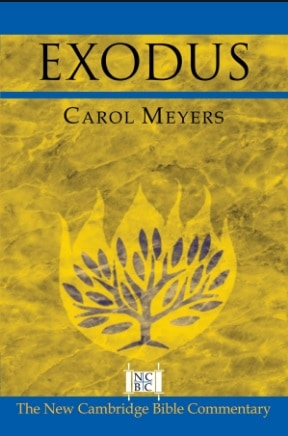 Exodus commentary Carol Meyers