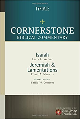Lamentations commentary Martens